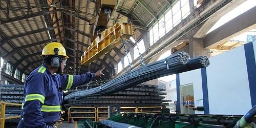 Por obras para la reconstrucción: Se viene una recuperación del mercado de acero